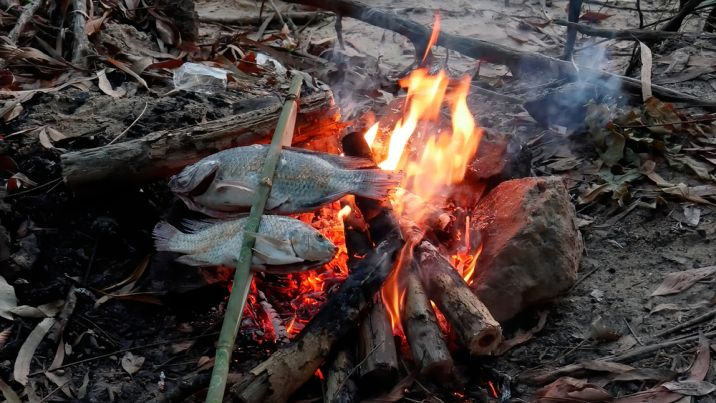 fish on a fire