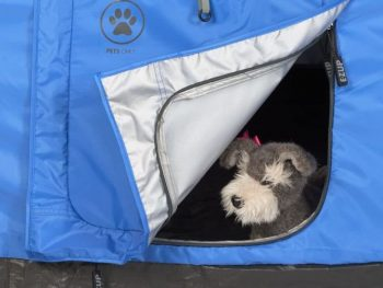 tent with a dog door