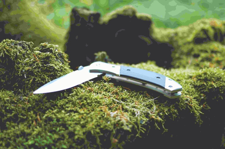 knife on moss