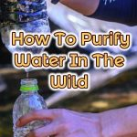 purifying water in the wild