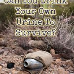 Can you drink your own urine to survive?