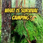 What Is Survival Camping?